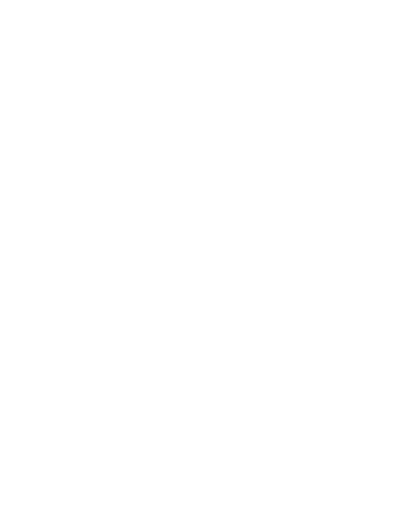 Blackbird Consulting